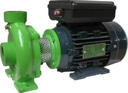 Centrifugal Pumps-125 Series with replaceable motor